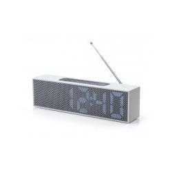 Radio Titanium Clock